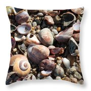 Rocks And Shells Throw Pillow