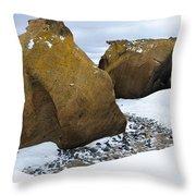 Rocks At Brown Bluff, Antarctica Throw Pillow
