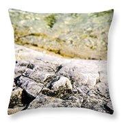 Rocks At Georgian Bay Throw Pillow
