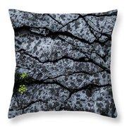 Rocks Throw Pillow by Grebo Gray