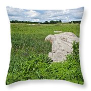 Rocks In A Tall Grass Prairie In Pipestone National Monument-minnesota Throw Pillow