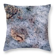 Rocks In Ice Throw Pillow