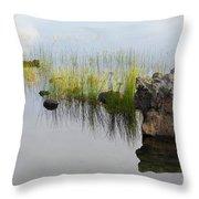 Rocks In Lake Throw Pillow