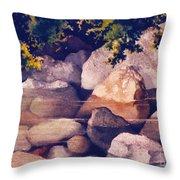 Rocks In Stream Throw Pillow