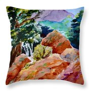 Rocks Near Red Feather Throw Pillow
