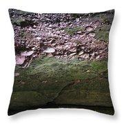Rocks - Parfreys Glen - Wisconsin Throw Pillow