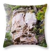 Rocky Cliff Wildcat Den Muscatine Ia 1 Throw Pillow