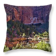 Rocky Cliff - Zion Throw Pillow