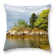 Rocky Coast In Maine Throw Pillow