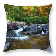 Rocky Creek Above Rocky Falls 1 Throw Pillow