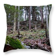 Rocky Hill Throw Pillow