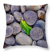 Rocky Landing Throw Pillow