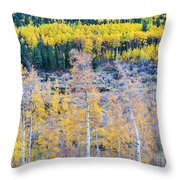 Rocky Mountain Autumn Contrast Throw Pillow by James BO  Insogna