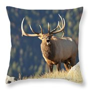Rocky Mountain Bull Elk Bugling Throw Pillow