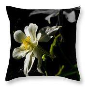 Rocky Mountain Columbine Throw Pillow