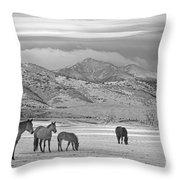 Rocky Mountain Country Morning Bw Throw Pillow