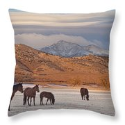 Rocky Mountain Country Morning Throw Pillow