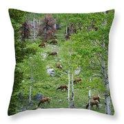 Rocky Mountain Elk Herd Throw Pillow