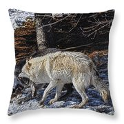 Rocky Mountain Encounter Throw Pillow by Skye Ryan-Evans