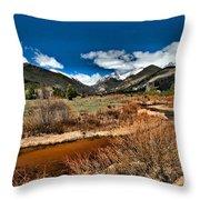 Rocky Mountain Meadows Throw Pillow