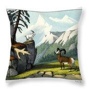 Rocky Mountain Sheep Throw Pillow