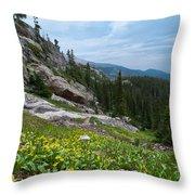 Rocky Mountain Summer Throw Pillow