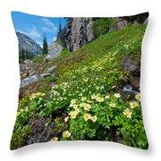 Rocky Mountain Summer Landscape Throw Pillow