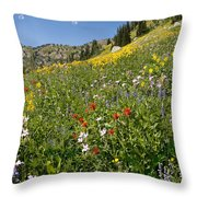Rocky Mountain Wildflower Landscape Throw Pillow