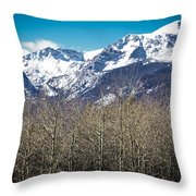 Rocky Mountain Woodland Throw Pillow
