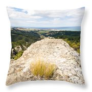 Rocky Outcrops Of Trotters Gorge Otago Nz Throw Pillow