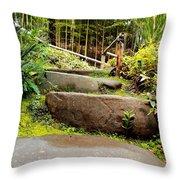 Rocky Path Throw Pillow