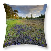 Rocky Prairie Cloud Explosion Throw Pillow