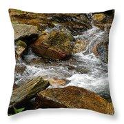 Rocky River 2 Throw Pillow