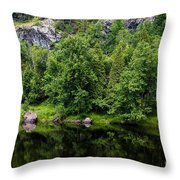 Rocky River Reflection Throw Pillow