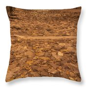 Rocky Road To The River In Savannah Throw Pillow