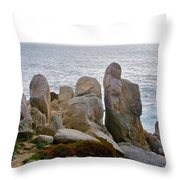 Rocky Seascape Throw Pillow