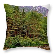 Rocky Shoreline Of Western Brook Pond In Gros Morne Nl Throw Pillow