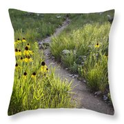 Rocky Top Trail Throw Pillow