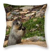 Rodent In The Rockies Throw Pillow