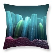 Rods And Cones Throw Pillow