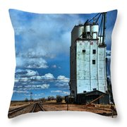 Roggen Co Throw Pillow