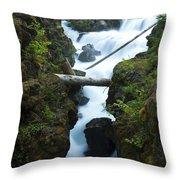 Rogue River Falls 1 Throw Pillow