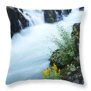 Rogue River Falls 5 Throw Pillow