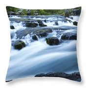 Rogue River Falls 9 Throw Pillow