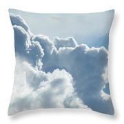 Roiling Throw Pillow