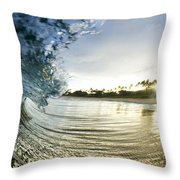 Rolled Gold Throw Pillow by Sean Davey