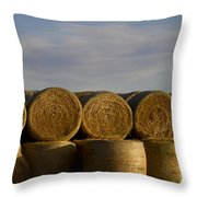 Rolled Hay   #1056 Throw Pillow