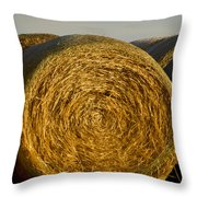 Rolled Hay   #1074 Throw Pillow