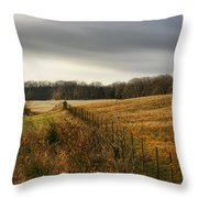 Rolling Field Throw Pillow