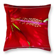 Rolling Hills 6 Throw Pillow